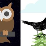 Being an Early Bird or a Night Owl May Affect a Freelance Web Developer's Productivity