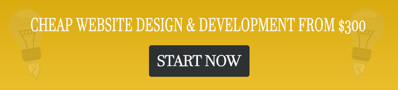 cheap website design development from 300